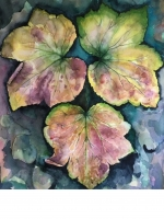 11_japanese-anenome-leaves.jpg