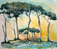 3_tuscany-trees-4_v2.jpg