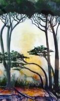 3_tuscany-trees2.jpg